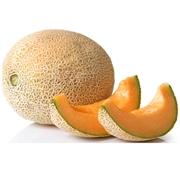 Meloa Galia