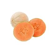 Meloa Cantalupe/Charentais